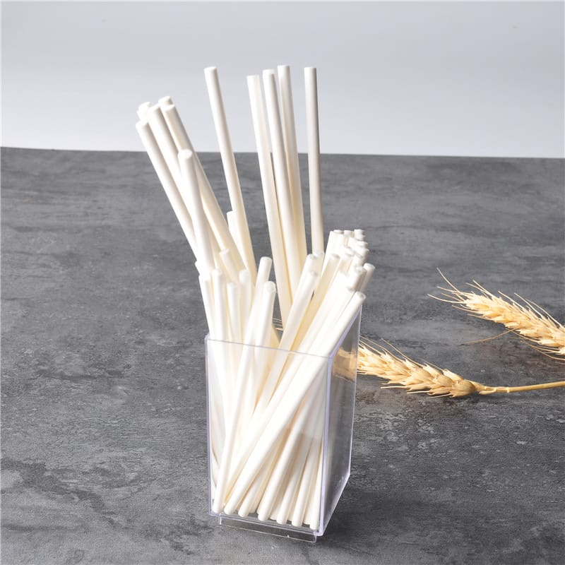 Top 50 Party Accessories: Solid White Paper Lollipop Sticks